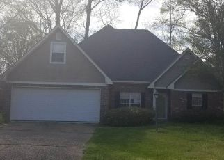 Foreclosure  id: 4261081