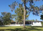 Foreclosed Home in Ocklawaha 32179 10550 SE 146TH TERRACE RD - Property ID: 1094554
