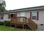 Foreclosed Home in Luray 22835 113 SKYVIEW DR - Property ID: 1948051