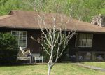 Foreclosed Home in Campton 41301 205 VORTEX LOOP - Property ID: 3895634