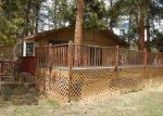Foreclosed Home in Bailey 80421 324 QUAKIE WAY - Property ID: 3968689