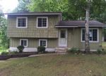 Foreclosed Home in Lapeer 48446 2350 INDIAN RD - Property ID: 4008008
