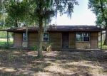 Foreclosed Home in Lithia 33547 330 MOCCASIN HOLLOW RD - Property ID: 4035488