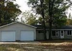 Foreclosed Home in Saint Helen 48656 2041 DOUGLAS - Property ID: 4057318