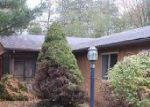Foreclosed Home in Bancroft 48414 5159 E COLE RD - Property ID: 4063035