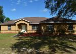 Foreclosed Home in Dunnellon 34431 10250 SE 138TH TER - Property ID: 4080719