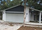 Foreclosed Home in Safety Harbor 34695 222 LOTUS DR - Property ID: 4082298