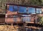 Foreclosed Home in Salisbury 5769 3081 LAKE DUNMORE RD - Property ID: 4091458