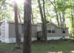 Foreclosed Home in Roscommon 48653 322 MAPLEWOOD DR - Property ID: 4095108