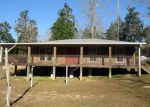 Foreclosed Home in Kiln 39556 19221 LATERRE DR - Property ID: 4105165