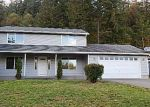 Foreclosed Home in Eatonville 98328 13505 SCOTT TURNER RD E - Property ID: 4115170