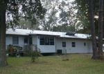Foreclosed Home in Fort Mc Coy 32134 14221 NE 110TH AVENUE RD - Property ID: 4124397