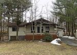 Foreclosed Home in Dingmans Ferry 18328 118 E MAHELI DR - Property ID: 4128100