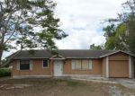 Foreclosed Home in Deltona 32725 950 HEMINGWAY DR - Property ID: 4129170