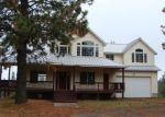 Foreclosed Home in Chattaroy 99003 29111 N CONKLIN RD - Property ID: 4129971
