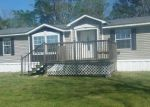 Foreclosed Home in Clio 36017 351 J W MCLEAN RD - Property ID: 4143208