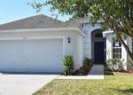 Foreclosed Home in Sun City Center 33573 7513 TURTLE VIEW DR - Property ID: 4145122