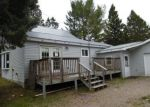 Foreclosed Home in Argonne 54511 3981 VILLAGE RD - Property ID: 4146183
