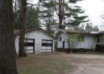 Foreclosed Home in Lena 54139 5077 MACHICKANEE LN - Property ID: 4147048