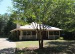 Foreclosed Home in Crestview 32539 4238 PAINTER BRANCH RD - Property ID: 4147541