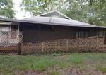 Foreclosed Home in Mc Alpin 32062 12595 158TH TER - Property ID: 4152255