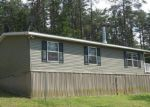 Foreclosed Home in Berkeley Springs 25411 2151 POSEY HOLLOW RD - Property ID: 4156582