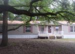 Foreclosed Home in Lithia 33547 2906 PRITCHER MANOR CT - Property ID: 4157471