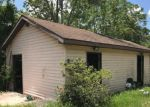 Foreclosed Home in Weirsdale 32195 11645 SE 170TH ST - Property ID: 4196044