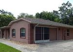 Foreclosed Home in Inverness 34453 2602 E NEWHAVEN ST - Property ID: 4199408
