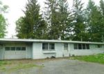Foreclosed Home in Howes Cave 12092 507 BARNERVILLE RD - Property ID: 4202742