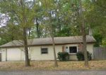 Foreclosed Home in Gowen 49326 15195 LINCOLN LAKE AVE - Property ID: 4212599