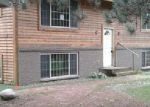 Foreclosed Home in Gilbert 55741 4527 VERMILION TRL - Property ID: 4212621