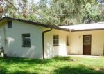 Foreclosed Home in Lakeland 33810 3920 MOSSY OAK DR - Property ID: 4215240