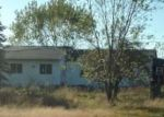Foreclosed Home in Necedah 54646 N13413 12TH AVE - Property ID: 4218938