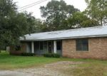 Foreclosed Home in Saint Martinville 70582 1027B COTEAU HOLMES HWY - Property ID: 4219471
