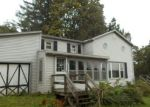 Foreclosed Home in Prattsburgh 14873 11305 MCMICHAEL RD - Property ID: 4222422