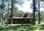 Foreclosed Home in Middleburg 32068 963 BROWNS RD - Property ID: 4223252