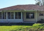 Foreclosed Home in Crestview 32536 115 TWIN OAK DR - Property ID: 4229116