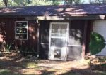 Foreclosed Home in Ocklawaha 32179 17475 SE 54TH ST - Property ID: 4230290
