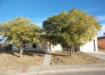 Foreclosed Home in San Elizario 79849 11404 CASITA - Property ID: 4233019