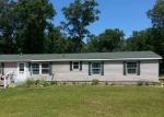 Foreclosed Home in Twin Lake 49457 294 E CEDAR RD - Property ID: 4240774