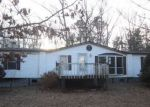 Foreclosed Home in Greenville 24440 131 BEARS DEN TRL - Property ID: 4244935