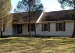 Foreclosed Home in Smyrna 19977 230 BLACK DIAMOND RD - Property ID: 4247687