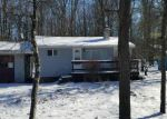 Foreclosed Home in Albrightsville 18210 126 BUCKHILL RD - Property ID: 4249422