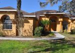 Foreclosed Home in Dover 33527 9402 SWIFT CREEK CIR - Property ID: 4255688