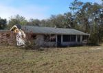 Foreclosed Home in Paisley 32767 43441 DIXIE DR - Property ID: 4256741