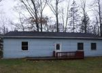 Foreclosed Home in Shelbyville 49344 4730 PRINCESS DR - Property ID: 4256986