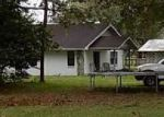 Foreclosed Home in Spring Hill 34610 20052 BOWMAN RD - Property ID: 4258640