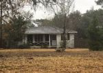 Foreclosed Home in Spring Hill 34610 16360 TIGER TRL - Property ID: 4259550