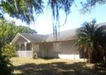 Foreclosed Home in Lithia 33547 19112 DORMAN RD - Property ID: 4260576